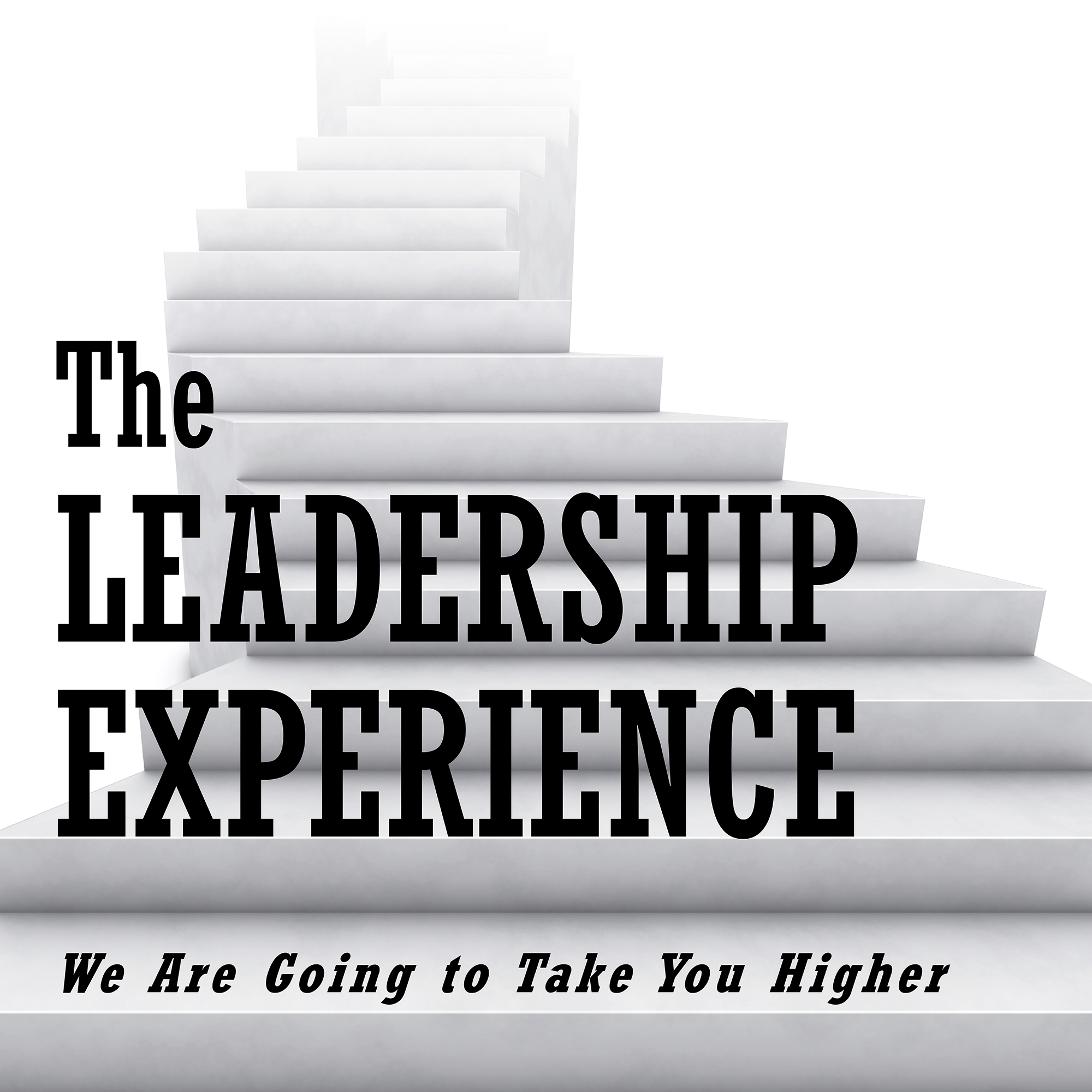 what is leadership experience